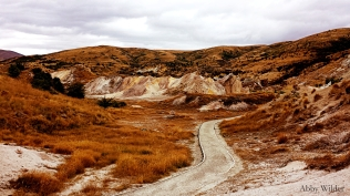 Loop Track - St Bathans
